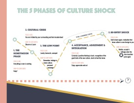 http://www.sharethelove.blog/living-abroad/cultural-differences/the-5-phases-of-culture-shock-and-how-to-go-through-smoothly/